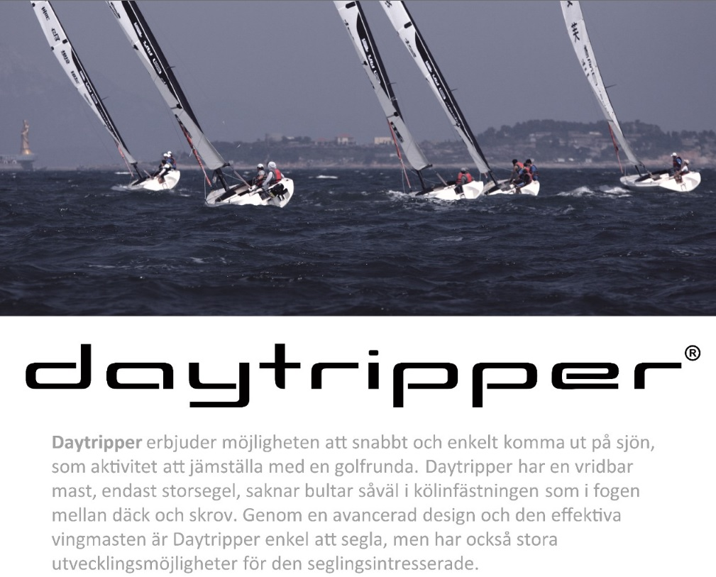 Daytripper index